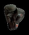 Boxhandschuhe Fighter Hook (Bild-1)