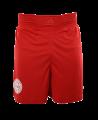 adidas Wako Technical Apparel Shorts rot adiWAKOS01 (Bild-1)