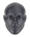 Quest Realistic Head Mitt Schlagpolster in Kopfform (Bild-1)