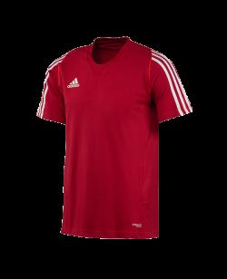 adidas T12 Team Shirt men SS Kurzarm rot adi X12936