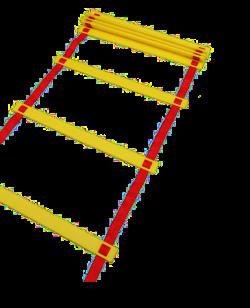 Agility Leiter - ca. 5 Meter/10 Stufen