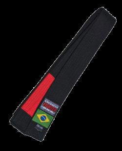 FW Brazilian Jiu Jitsu Gurt schwarz