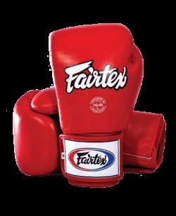 Fairtex Universal Boxhandschuh ROT BGV1
