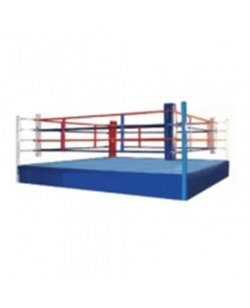 FW Boxring Training Ring komplett
