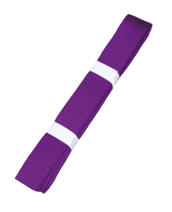 Farbgurt violett