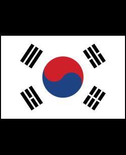 Flagge Südkorea ca.150 x 84cm