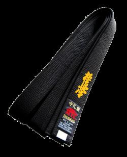 Stil Bestickung KYOKUSHIN in japanischen Schriftzeichen ca. 10 x 3cm auf Gürtel oder Textil