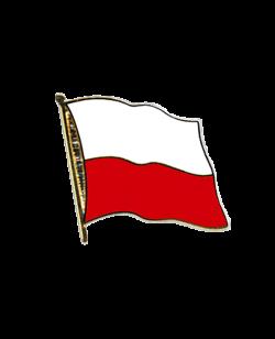 Flaggen-Pin Polen