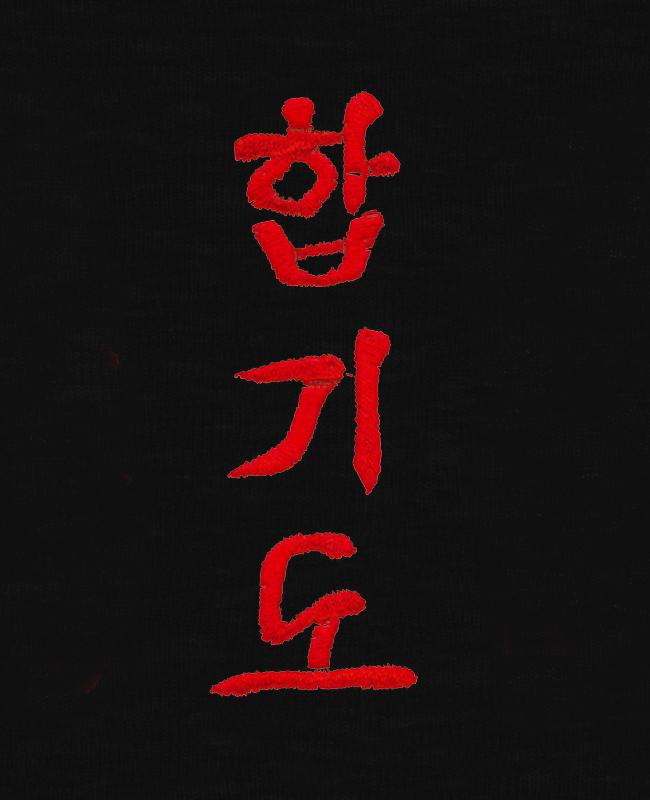 Stil Bestickung HAPKIDO in koreanischen Schriftzeichen ca. 10 x 3cm auf Gürtel oder Textil
