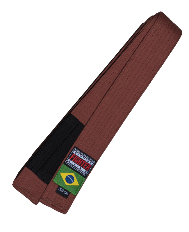 FW Brazilian Jiu Jitsu Gurt braun 300 300 cm