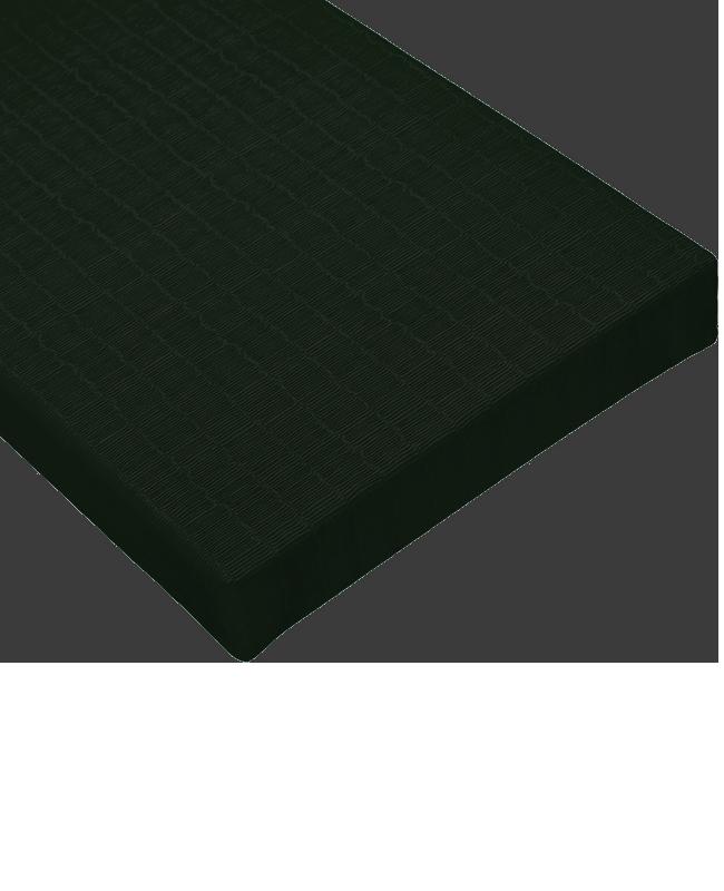 BSW Judo Matten TATAMI DELUXE IJF schwarz 2x1m x 40mm 2x1m