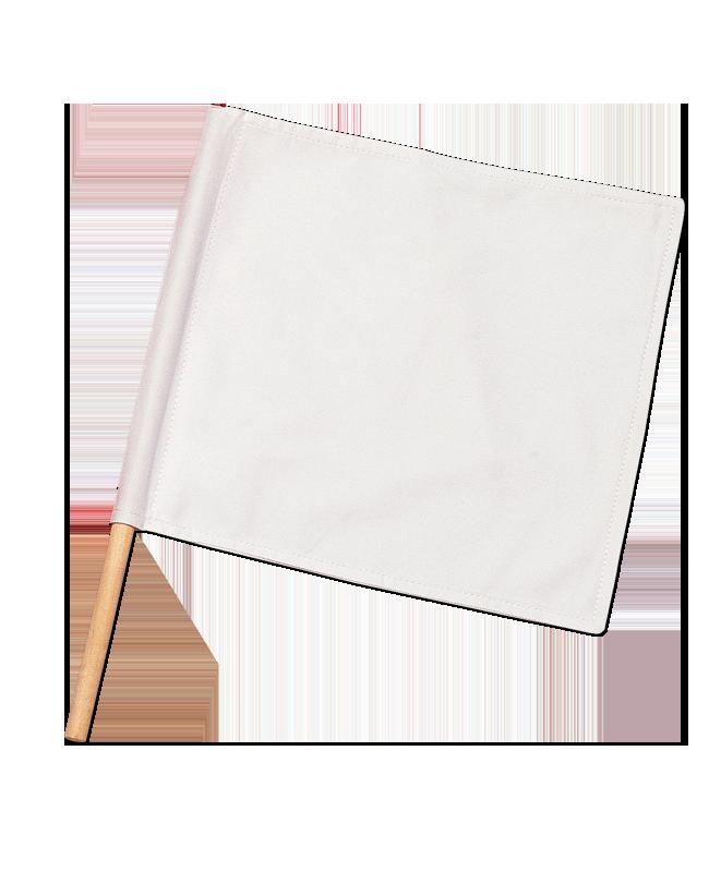 Punkterichter Fahne weiss