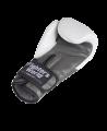 Fighter`s World  FIRESTORM Boxhandschuhe 12 oz weiß (Bild-2)
