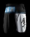 Hayabusa Flex Factor Fight Shorts blau/schwarz (Bild-2)