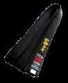 Stil Bestickung SHINKYOKUSHIN in japanischen Schriftzeichen ca. 10 x 3cm auf Gürtel oder Textil (Bild-2)